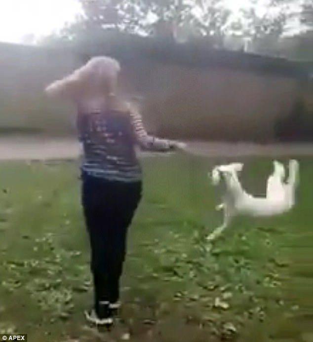 14歲女掐狗脖子「瘋狂甩狗轉圈圈」,狗狗「脖子被扯到飛起來」笑不停全網暴怒!(影片慎入)