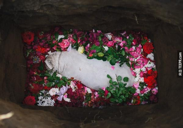 這對夫婦的愛犬去世了,這是他們為她做的最後一件事情。最後兩張照片讓我哭了!