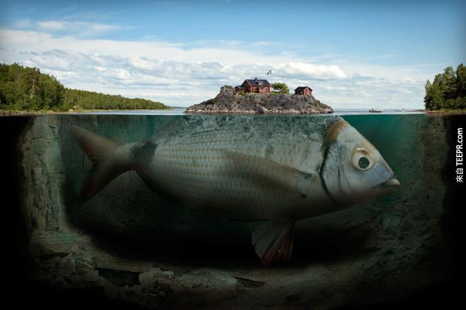 好美麗的魚島!