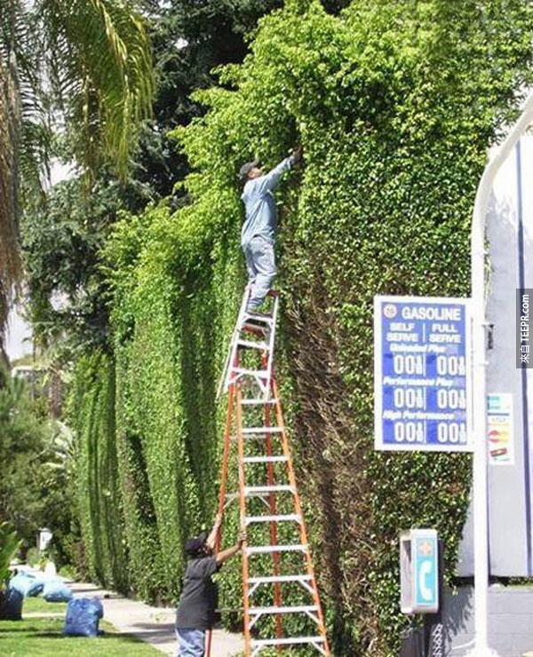 """22.) 為什麼每個人都覺得梯子很安全...-_-"""""""