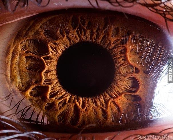 這隻眼睛看起來像什麼?原來裡面的黑真的是這麼深邃。
