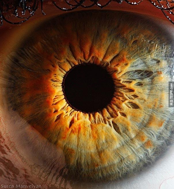 這個眼睛還蠻像向日葵的。