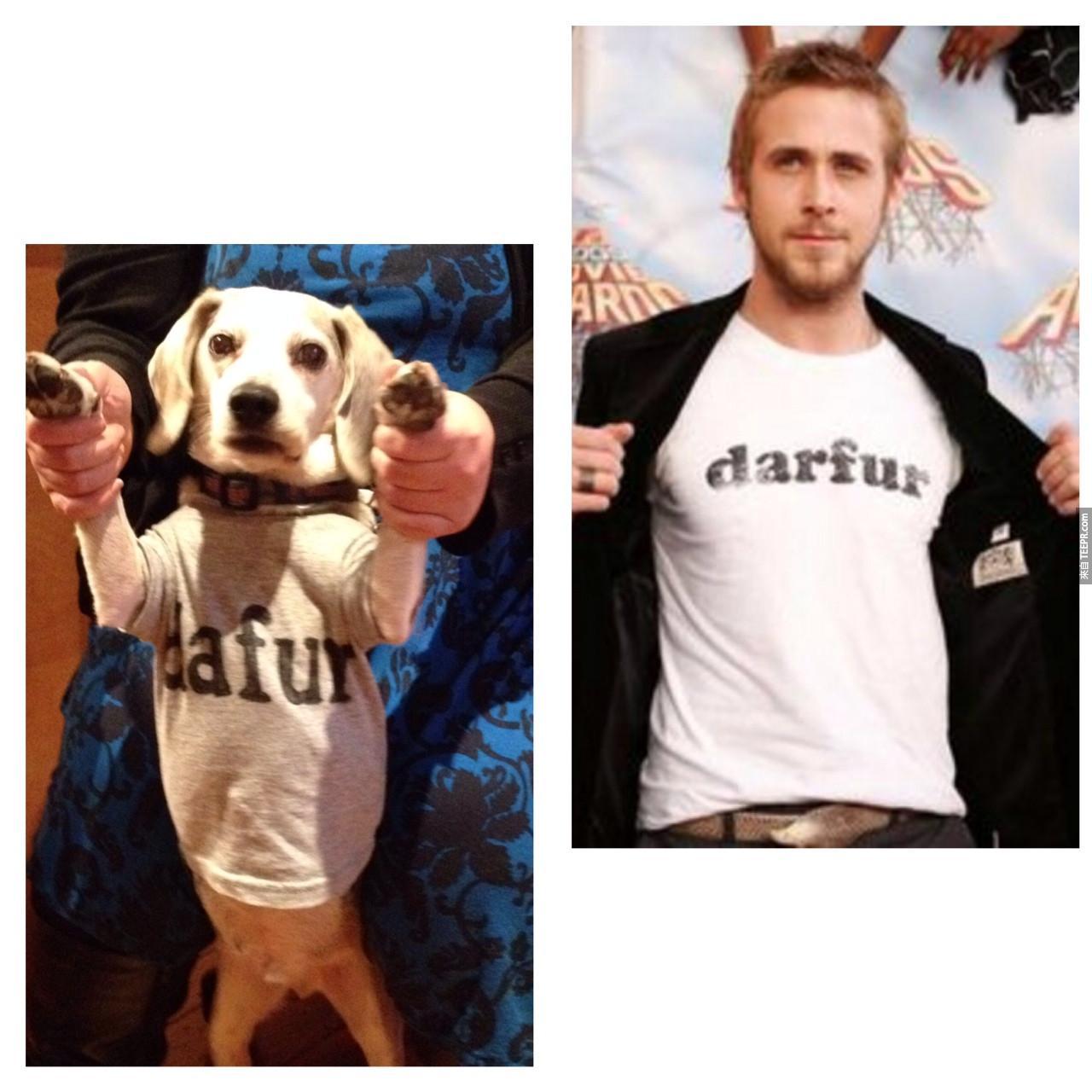 這名男子對他的狗做的事情簡直太天才了!我到#7就忍不住笑出來了!