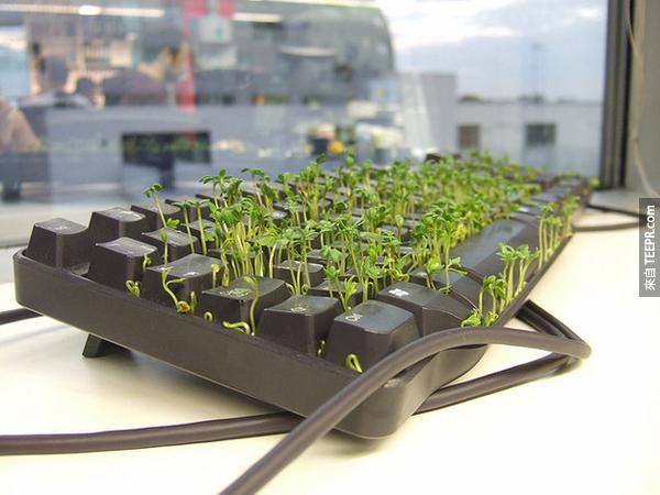 8.) 如果你覺得有同事不夠環保,你可以幫他的環境加點綠油油的植物。