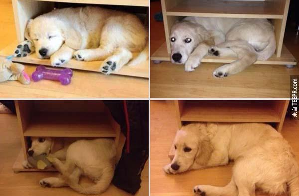 但是媽媽,為什麼不能睡這裡?!(1年後)