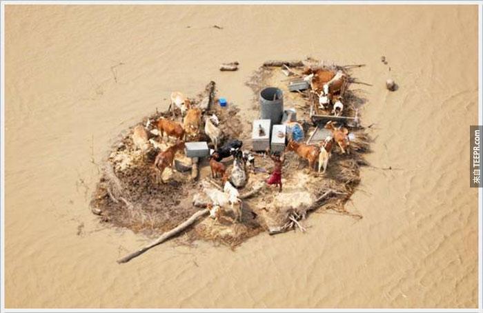 12)年輕男子被被洪水下面的季風,2010(巴基斯坦被困)