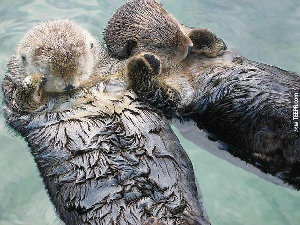17. 水瀨睡覺的時候會牽手,所以他們才不會飄走。