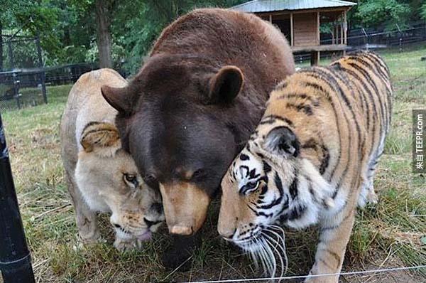 現在他們被救出來後,還是最要好的朋友。