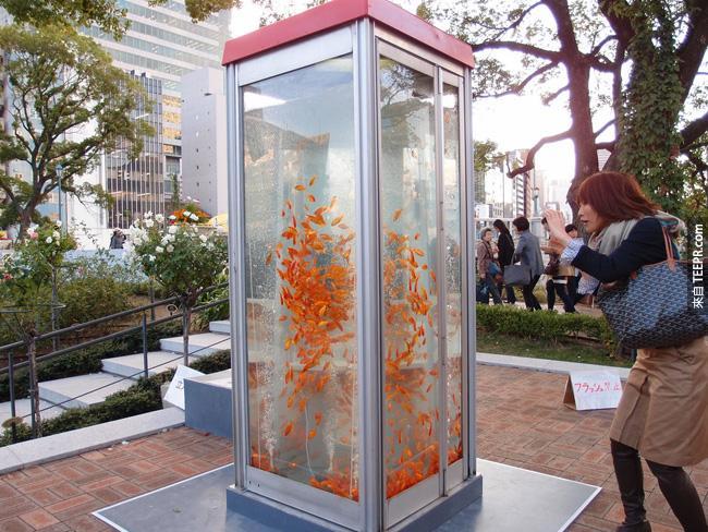20. 電話亭被轉化成水族館。