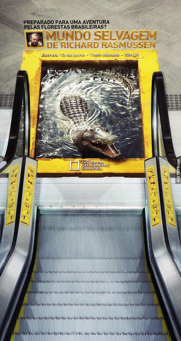 國家地理頻道 National Geographic: 3D 鱷魚手扶梯
