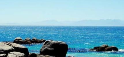 這個海灘固然很美,但是絕對美不過在海灘上的東西。你一定會超愛的!