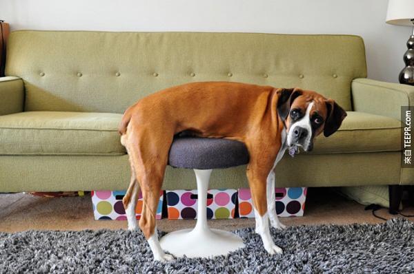椅子是這樣坐的嗎?