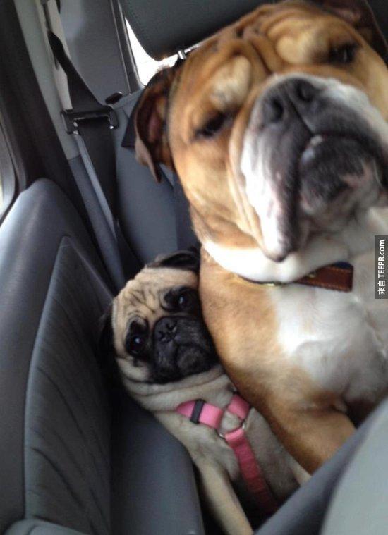 """14. """"這是我的座位...你可以不要擠過來嗎?"""""""