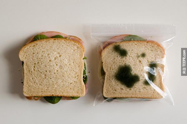 """15.) 在學校有人偷吃你的東西嗎?你可以用這些""""發霉""""塑膠袋把三明治盜賊趕走。"""