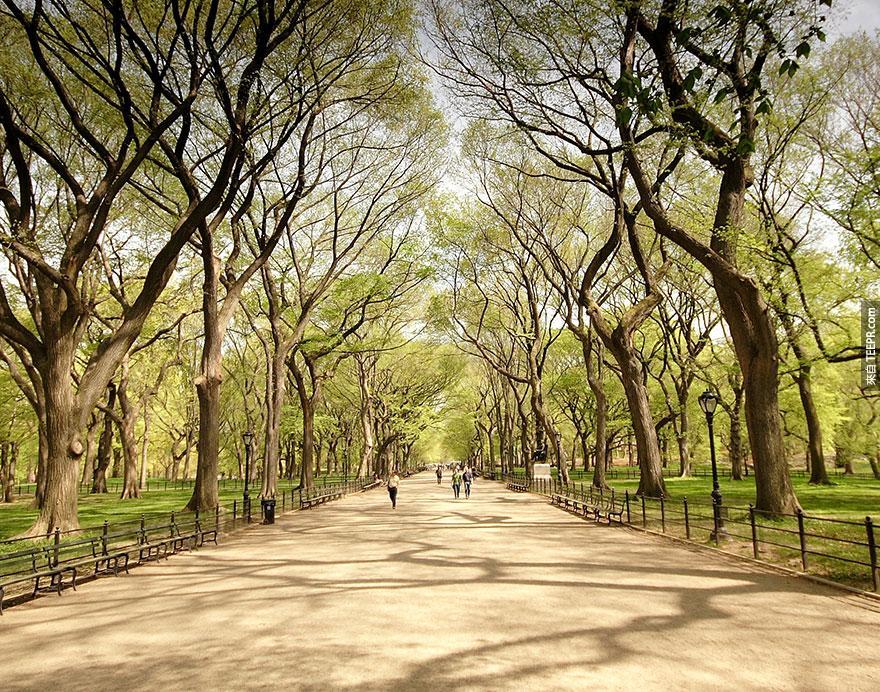 13.中央公園,紐約市 (Central Park, New York)