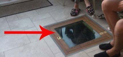 這個人剛買了一棟房子...但是在廚房裡發現一個很恐怖的祕密。