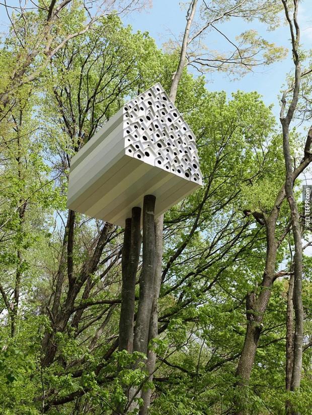 這24棟樹屋比你夢裡的還要夢幻。難怪有人不喜歡住在普通屋子裡面。
