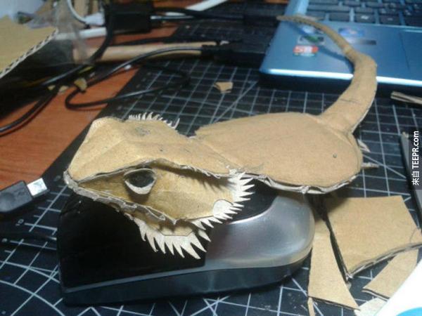 這隻看起來超帥氣的鬍鬚龍是全世界唯一的一隻。咦,等一下...近看時發現怪怪的!