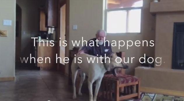 失憶老人已經無法說話,但當狗狗靠近時他拍下最感動畫面。