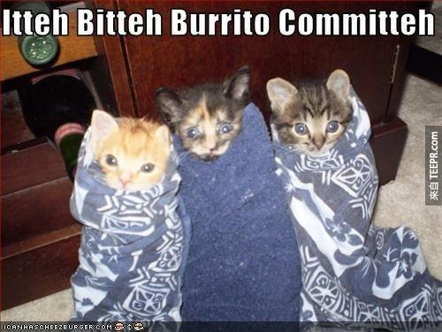 More like Committee-Destined-To-Kill-Me-With-Cuteness.
