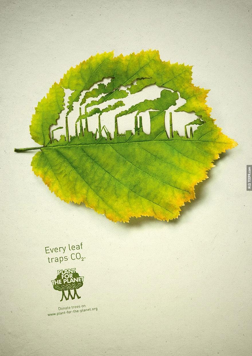 29. 給地球的植物