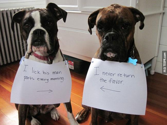 22. 左: 我每天都會舔他的小弟弟。右: 我從來都不回報。