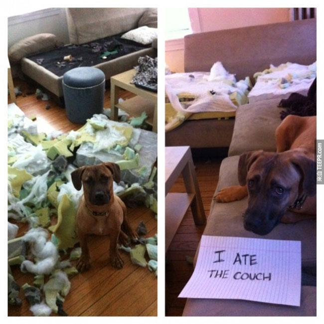 24. 我把沙發吃掉了。