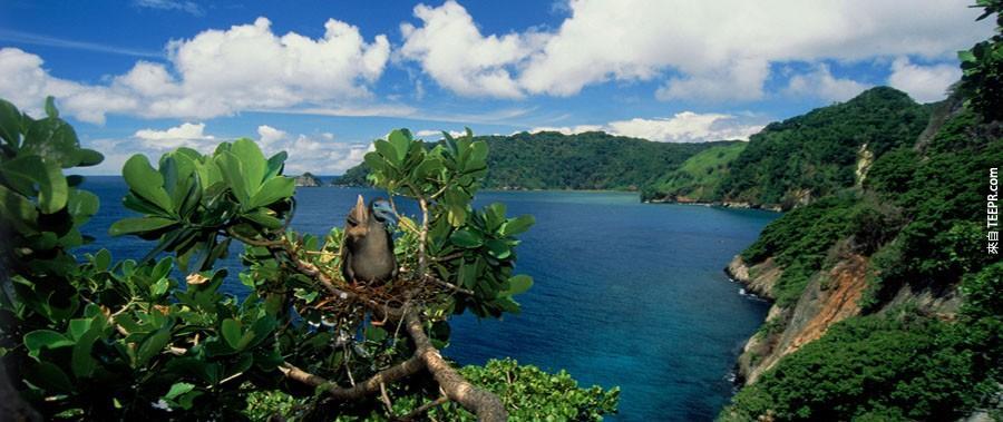 科科斯群島,哥斯達黎加