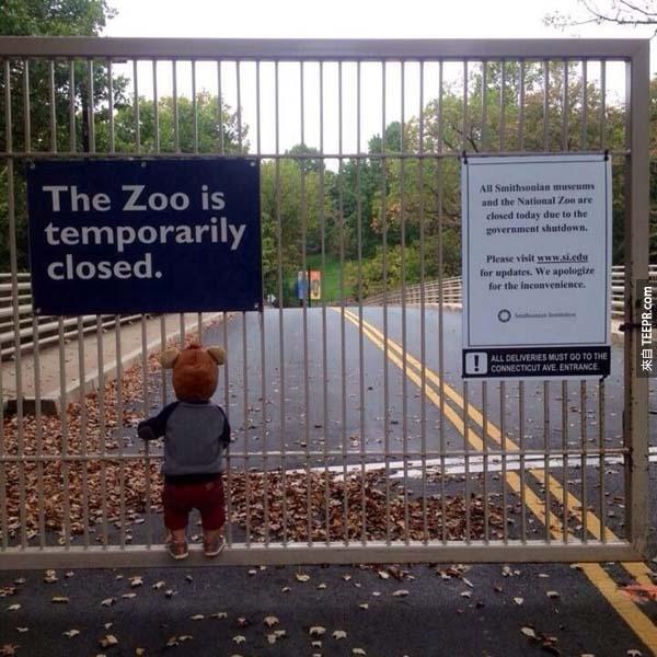 一個孤單小男孩難過得看著被政府暫時關閉的國家動物園。