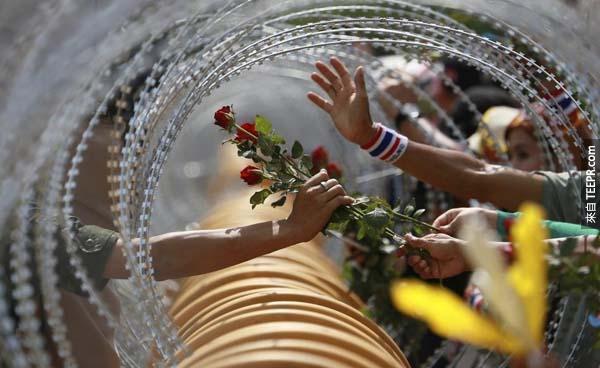 曼谷示威抗議期間,反政府的人士透過封鎖線遞给泰國士兵一朵玫瑰。