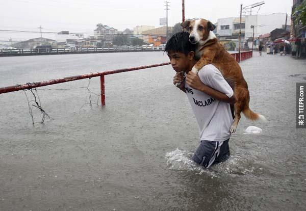 菲律賓馬尼拉(Manila)洪水時期,一位男孩背著他的愛犬在水災中涉水而行。