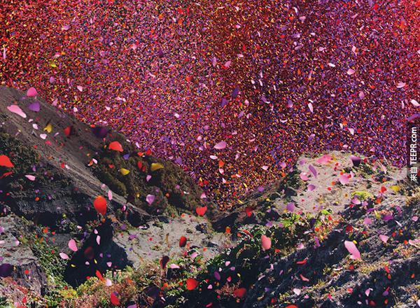 花瓣從一座火山裡炸出來。