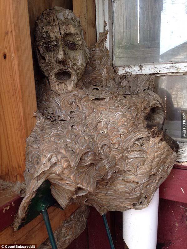 這個人的爸爸已經有兩年沒有進去這間小木屋了,但當他打開門的時候...WOW!