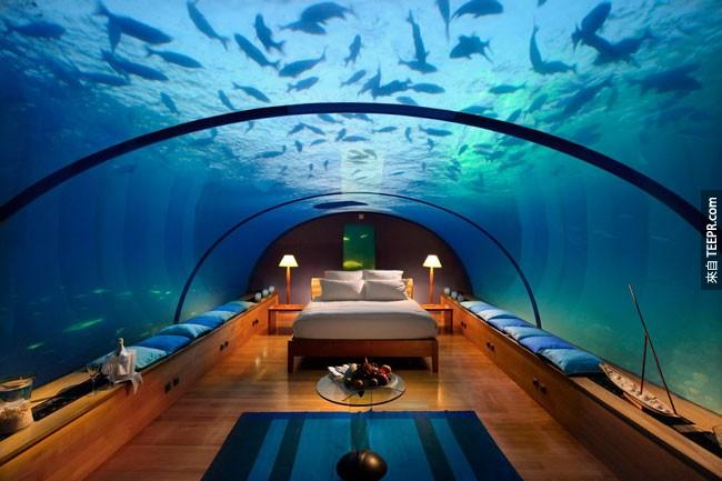 21. 或是你也可以在马尔地夫跟水里的生物一起睡。