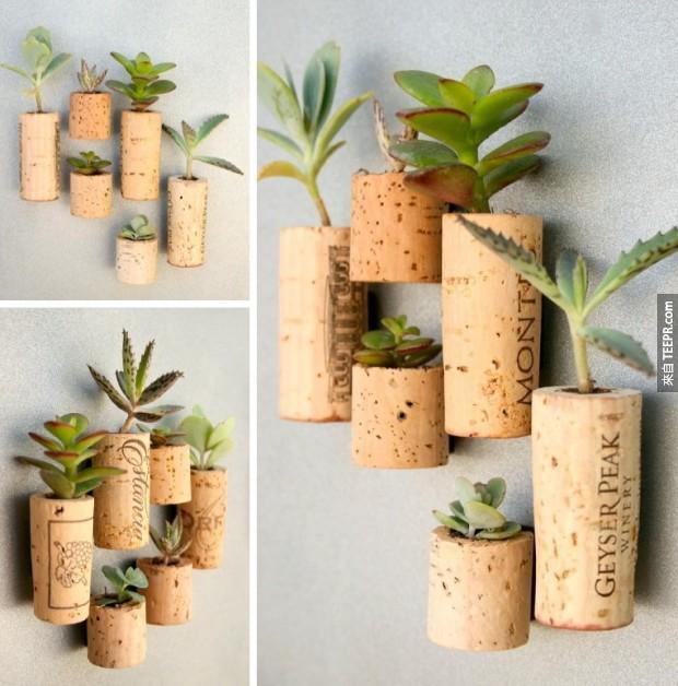 18. 把红酒木塞安装磁铁,然后把它们变成冰箱上的盆栽。