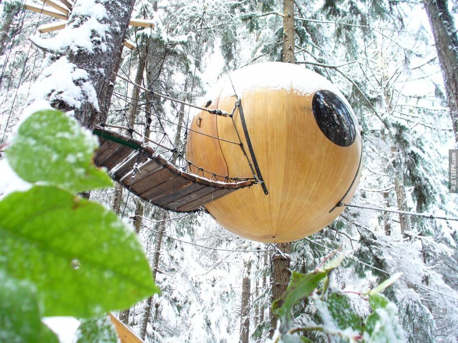 11)自由精神球 - 溫哥華島