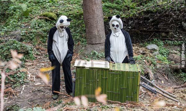 你一開始看這些穿貓熊裝的人一定會覺得很奇怪,但是這會不會就是全世界最好的工作?