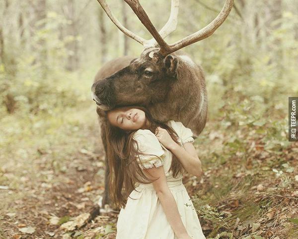 這些文靜唯美的模特兒配上這些野生動物的視覺效果真的很震撼人心。