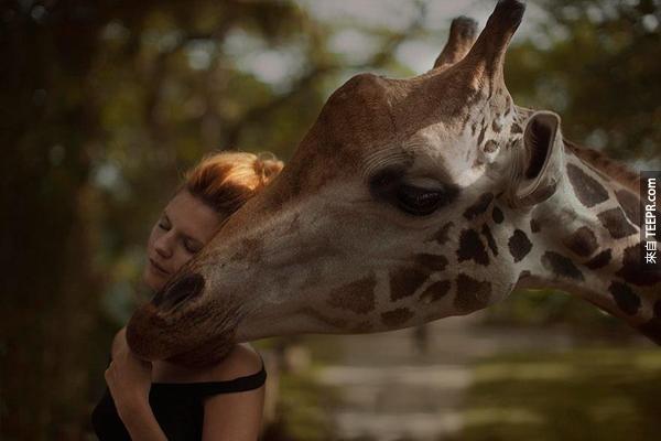 他的照片裡都有真的野生動物配合。