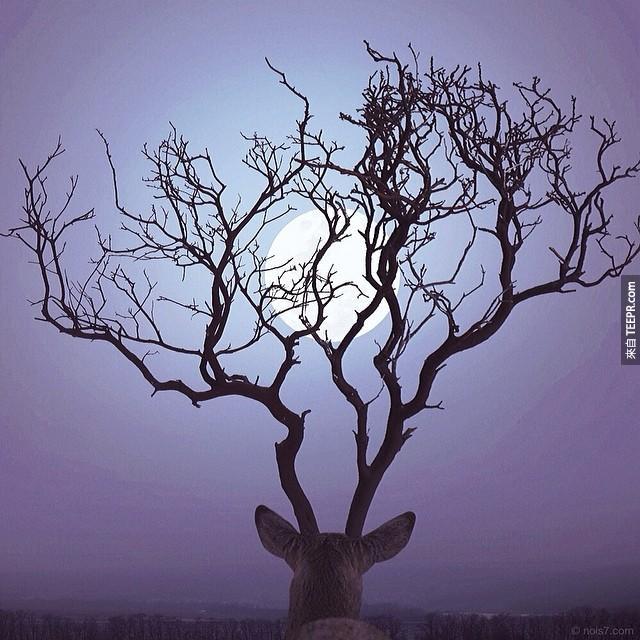surreal-photography-robert-jahns-18