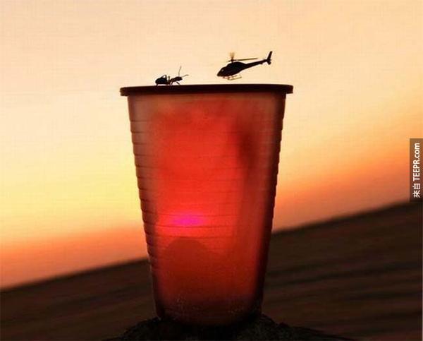 17.) 全世界最大螞蟻還是最小的直升機?