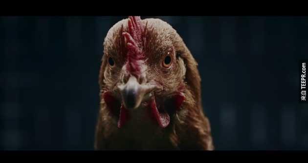 在賓士汽車的廣告裡,他們把賓士的車子的穩定性比喻成雞的穩定性。不管你怎麼搖晃雞,他的頭都會留在原位。