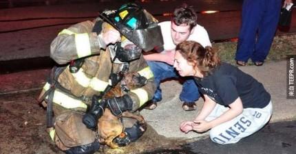 你所看到的這些消防員的照片都是真的。最後一張照片真的讓我感觸很深!