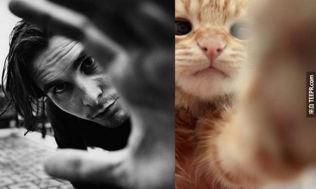 37個超帥巨星跟嘗試學他們的超可愛貓咪,會讓你超困惑不知道誰比較欠抱!