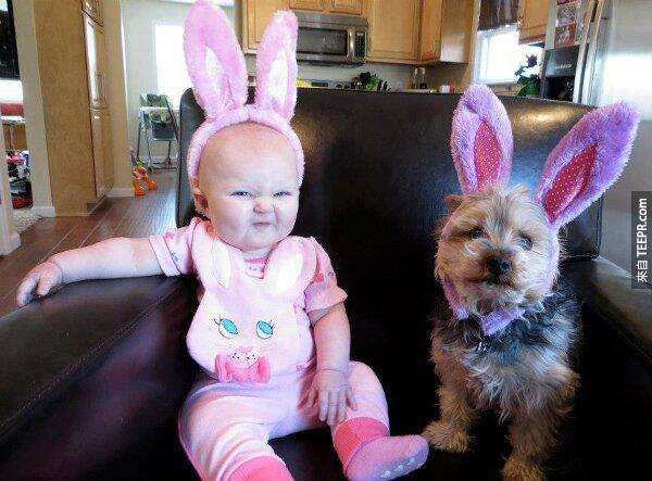 22個原因為什麼小Baby需要寵物。太可愛了!特別是#17!