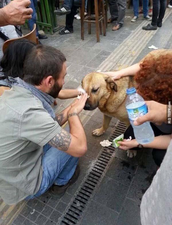 36.) 在抗議期間,狗兒的眼睛受到催淚瓦斯的襲擊,大家都停下來幫他沖水治療。(怎麼樣都不能讓狗狗受到傷害!)