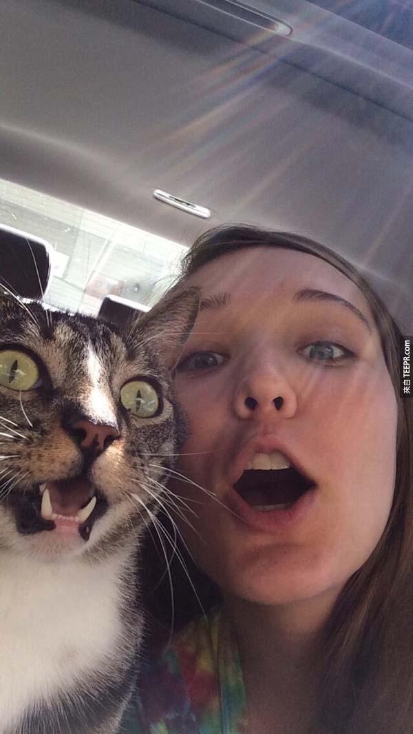 10.) 貓咪就跟他的人類媽媽一樣。