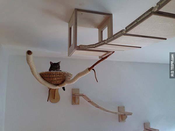 怎麼樣才能知道一個人對家裡的貓咪很好?他的屋子裡長得像這樣的話就知道了。