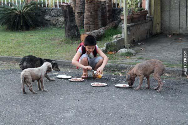 Ken在8歲的時候就已經想要建立一個動物收容所。