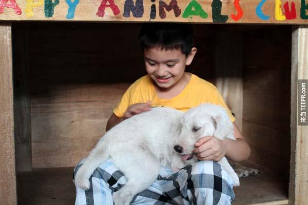 他們租了一塊地,現在他們可以開始拯救動物收容所的小狗。